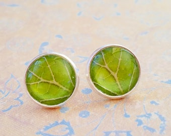 20% OFF - Green Leaf Veins Cabochon Stud earrings ,Cute Gift Idea ,Man Dad