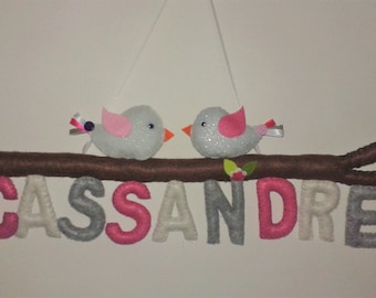 Name to personalize with colors and decorations to choose