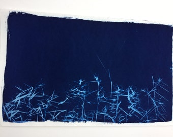 Wild Grass, Cyanotype print, nature art, abstract nature art, botanical art, sunprint, blue grass, modern botanical art, Grass photo