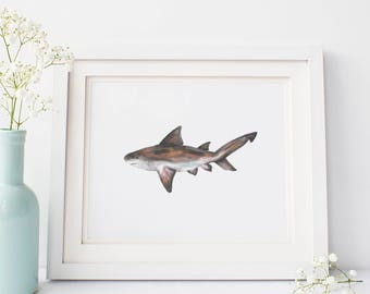 Shark Poster, Digital Download Art, Art Prints Ocean, Sea Creature Artwork, Sea Wall Art, Shark Wall Printable, Bull Shark Art Boys Room Art
