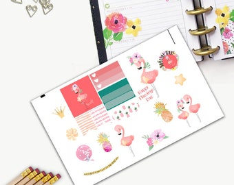 Pink Flamingo Day Theme One Day Small Planner Sticker Set, All Happy Planner Stickers, Sticker, Printed, Cut, Functional Sticker, Flamingo