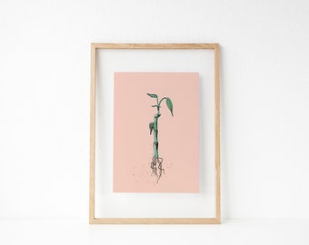 Bamboo | Wall Decor