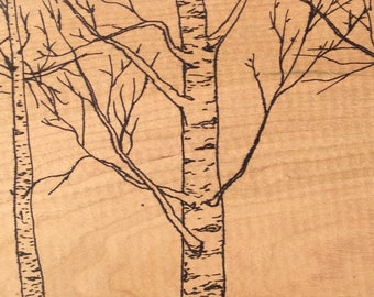 Birch Through my Window—Ink Drawing on Cherry