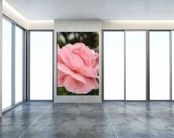 Floral Nature Photograph Pink Passion - Fine Art Canvas - Home Decor Unframed Wall Art Prints