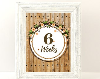 Pregnancy board, Maternity, Pregnancy week by week,  Maternity photo prop, Printable.