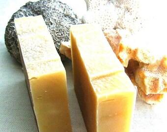 Aloe Shampoo Bar with Lavender Rosemary, and Mint - Vegan Shampoo Bar