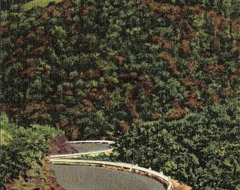 Eureka Springs, Arkansas, Highway 62 - Vintage Postcard - Postcard - Unused (PP)