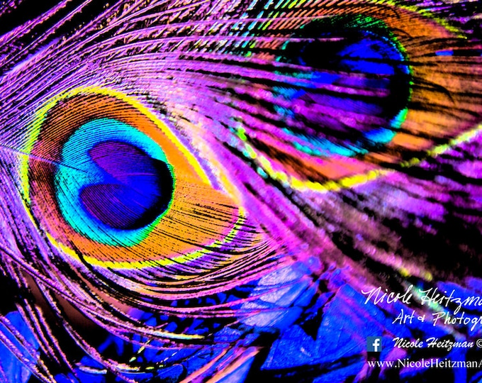 Peacock Feather Photography Peacock Photo Vibrant HDR Metal Print Peacock Art Texture Modern Photography HDR Photography by Nicole Heitzman