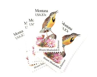 5 x Montana USA 20c Western Meadowlark & Bitterroot - State Birds UNused 1982 Vintage postage stamps Scott 1978 - invites, mail art