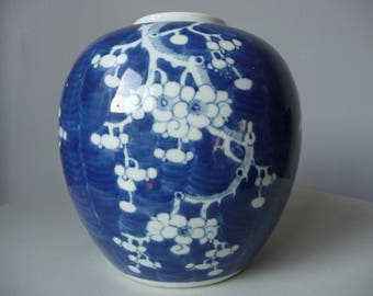 Large Chinese Prunus Plum Blossom Ginger Jar Vase Concentric Double Blue Circle Mark c 1900s