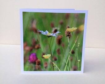 Greetings card, Fine art card,  6'' x 6'', original design, 'Meadow' with envelope