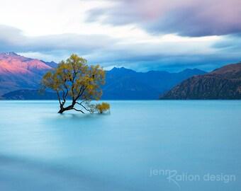 Wanaka Tree New Zealand Photo, New Zealand Photography, Landscape Photography, Water Photo, Nature Photography, New Zealand Fine Art Print