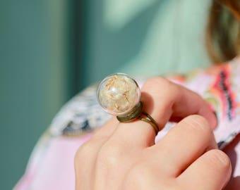 Ring adjustable - Dandelion seeds -  Nature rings for women - Inspirational ring - Real flower ring - Botanical ring - Rings for women