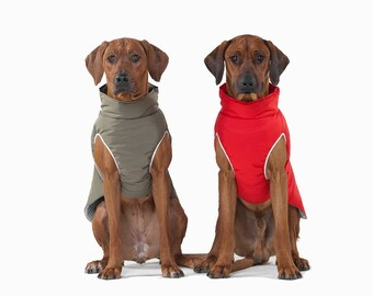 Ridgeback warm jacket, large dog clothes, warm jacket, winter jacket, jacket for dog, dog jacket, dog wear, gift, dog clothes