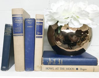 Blue Old Books, Books for Shelf Decor, Blue Decor, Decorative Books