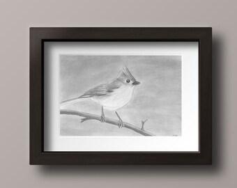 Tufted Titmouse Print - Titmouse Print - Titmouse Art - Titmouse Wall Art - Titmouse - Gray Bird - Bird Print - Bird Decor - Bird Wall Art