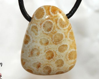 Fossilized coral on leather strap / cotton cord (necklace)