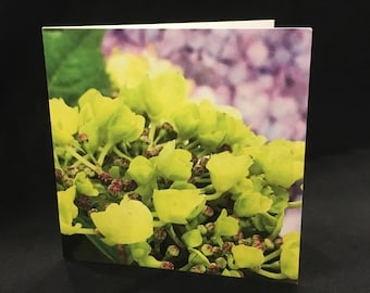 "Hydrangea Blank Note Cards (Set of 8) | 4""x4"" All Occasion Blank Cards w/ Envelope 