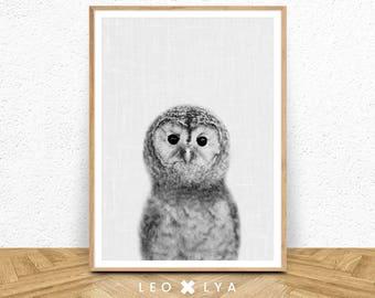 Nursery animal print, printable art, baby owl, nursery decor, animal art, baby animals, nursery wall art, owl wall art, kids art, baby