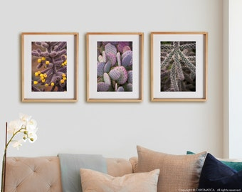 Nature 3V Print Collection.  Detail photography, cactus, southwest, purple, wall art, artwork, large format photo.