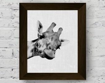 giraffe wall art print, black and white animal photography, safari animal print poster, jungle animals, digital download, printable art