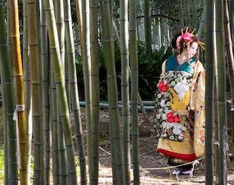 A Bamboo Geisha