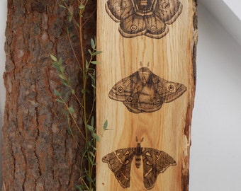 Wooden wall hanging.Moth.Butterly.Pointillism.Dotwork.Stippling.Wood burning.Pyrography.House warming gifts.Rustic.