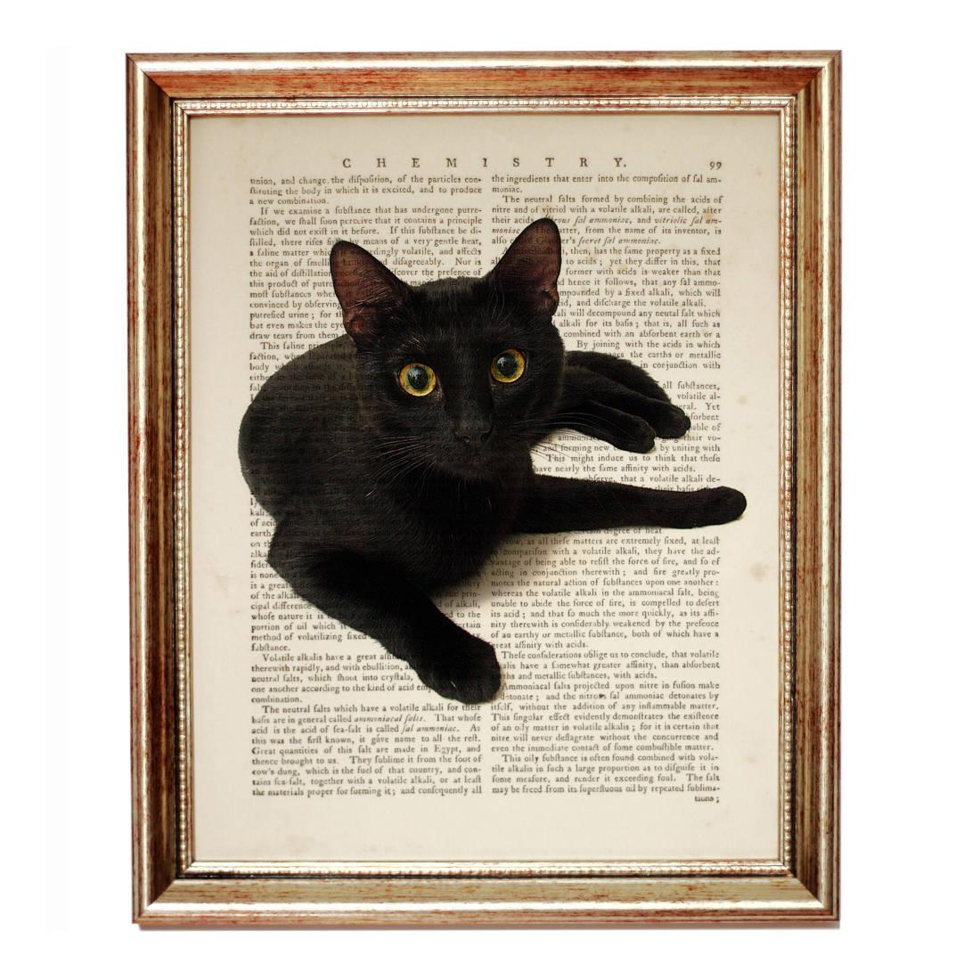 Футболка Черная кошка купить в Москве: цены 36