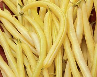 Gold Rush Wax Bush Bean Heirloom Garden Seed Non-GMO Naturally Grown Open Pollinated Gardening