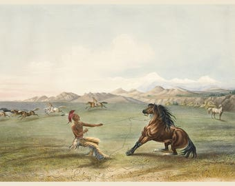 George Catlin: The Indian Gallery, Reigning in a Wild Horse, c. 1840s - Fine Art Print.