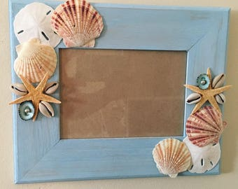 Beach Seashell and Sand Dollar Picture Frame, Shell Picture Frame, Beach Rustic with Shells Frame