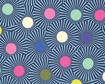Clear skies in blue raspberry from the Slow and Steady fabric collection by Tula Pink for Free Spirit fabrics