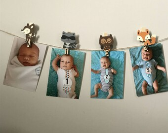 Woodland First Birthday,  Woodland Monthly Photo Banner, Woodland Birthday Party, N-12 Pictures