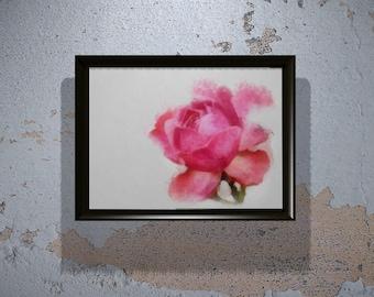 Rose Print - Rose Watercolor- Rose Flower Painting