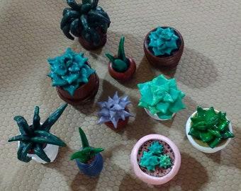 Clay Succulents