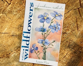Lewis Flax Wyoming Wildflower Seeds