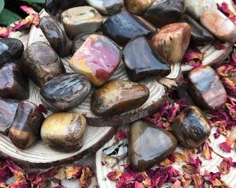 PETRIFIED WOOD Fossil (Grade A Natural) Tumbled Polished Fossilized Wood CHALCEDONY Gemstone Rocks for Healing, Yoga Meditation Reiki Wicca