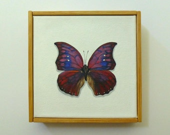 6x6 anaea tyrianthina Butterfly Original Painting