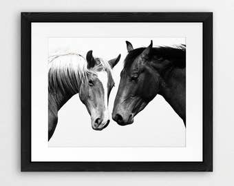 Horse Print, Horse Photo Black & White, Wild Horses, Two Horses, Wilderness Print, Icelandic Horse, Equestrian, Modern Wall Art, Printable