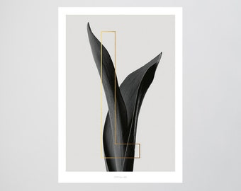 ABC Plants - L / Fine Art-Print, Wall-Art, Minimal Poster Art, Typography Art, Premium Poster, Kunstdruck Poster