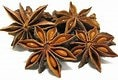 Star Anise Seed Essential Oil