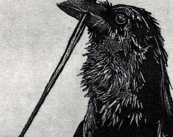 Raven artwork , Raven, crow, Tooth Fairy, etching, 5 inch by 7 inch. 2016