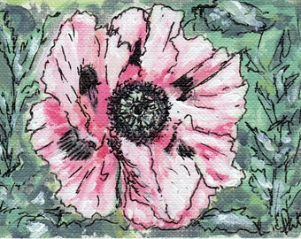 ACEO Blowsy (Fading) Poppy