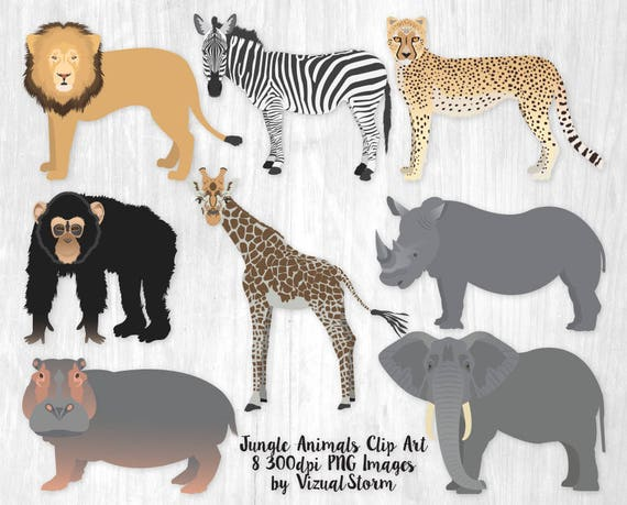 Jungle Animal Clipart Safari Animal Birthday Graphics Elephant