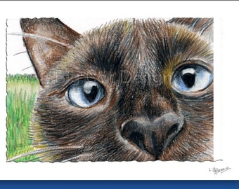 CAT CARD. Whatcha Doing. Closeup Siamese Cat. 5x7 Framable Card.