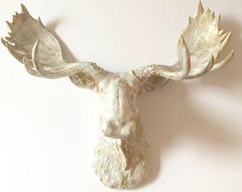 CREAM GOLD Faux Finish Faux Taxidermy Moose Head wall mount White Cream and Gold moose head faux taxidermie farm house decor mounted moose