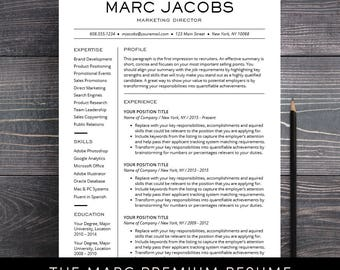 CV Professional Template CV Template Word or Mac Pages Instant