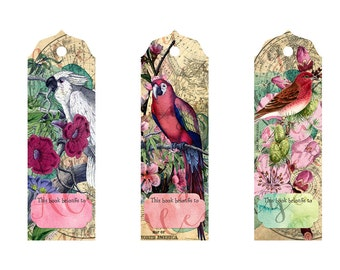Instant Download! Vibrant Bird Bookmarks  5 x 1.75 inches