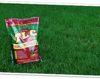 TLC Turf Type Tall Fescue Grass Seed