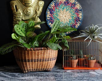 Tricolor Large Planter Basket - perfect as a planter or for organization